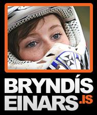 Bryndís